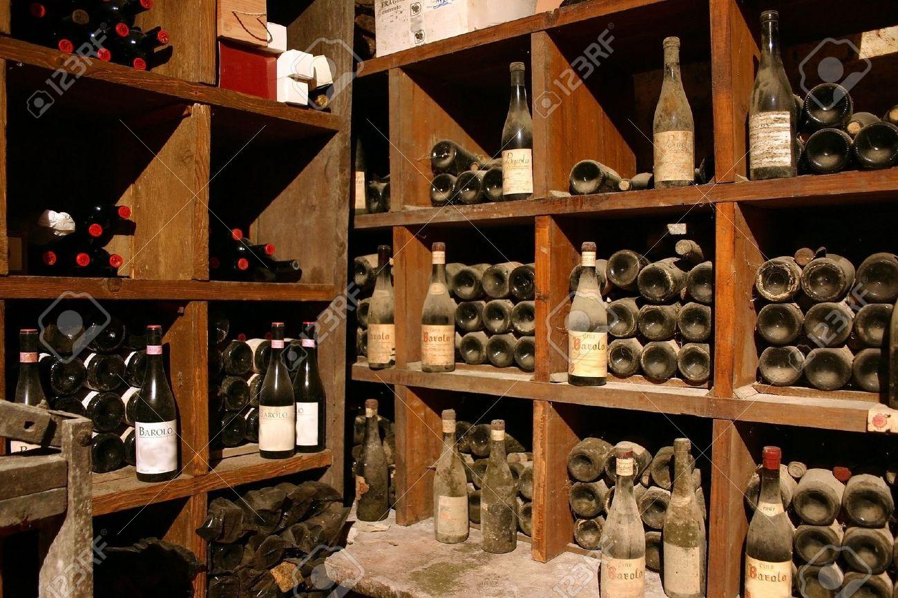 Pour tout savoir sur la cave à vin en quelques clics